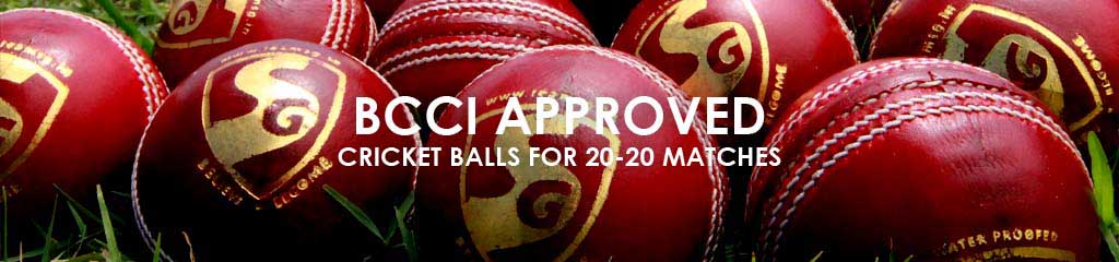 SG Cricket - Official T20 Cricket Balls!