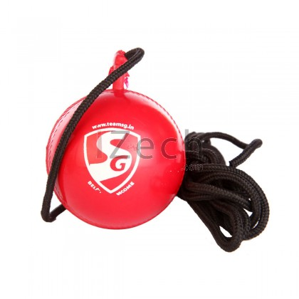 SG iBall Cricket Training Ball