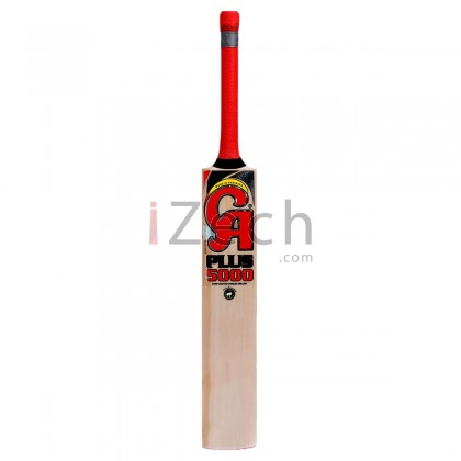 Plus 5000 English Willow Cricket Bat Size SH