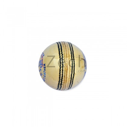 SS County Cricket Ball
